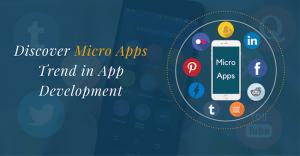 micro app development