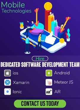 Hire software developer