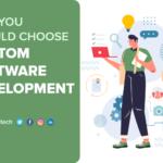 Why You Should Choose Custom Software Development?